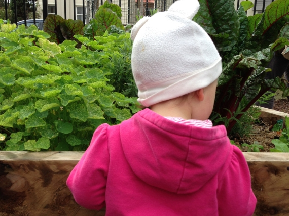 charlotteats garden2