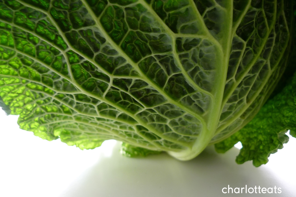 charlotte eats savoy cabbage